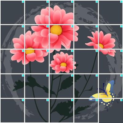 菊(5×5)