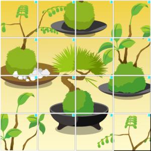 盆栽(4×4)